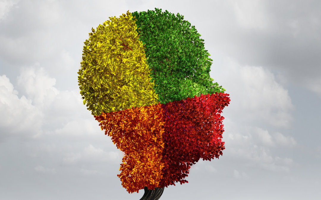 Color Psychology : What It Means For Your Brand